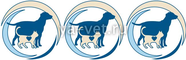 ветеринария собак симптомы заболеваний